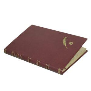 Гиляровский В. Забытая тетрадь (стихотворения), 1901