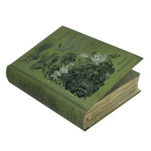 Геедёрфер М. Комнатное садоводство. 1904
