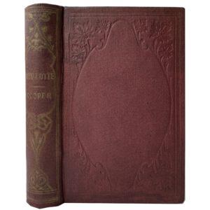 Купер Ф. Вайандотте, или хижина на холме, 1867 (на англ. яз)